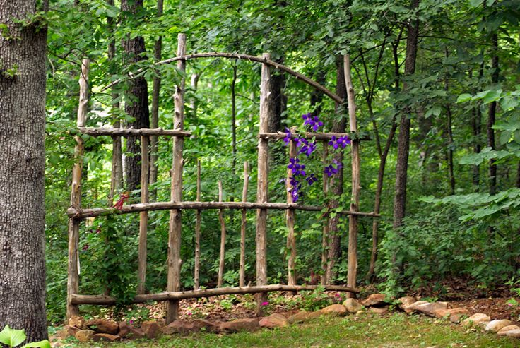 Shade clematis love this natural cedar trellis made from trees taken down due to storm damage.  It flows right into the woods... the birds love it as well, especially in the winter when we hang feeders there.