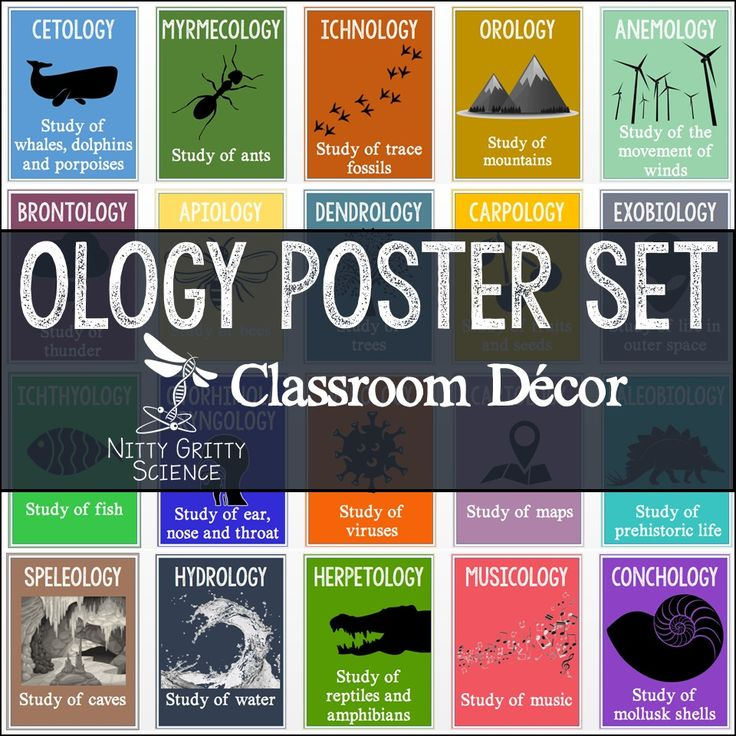 889 Best Images About Biology Classroom On Pinterest