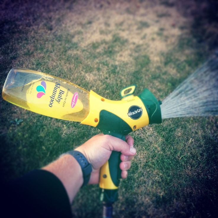 My invention for keeping the slip 'n slide wet and slippery. Baby shampoo bottle + miracle grow nozzle + hose. #tmcconahay