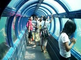 Underwater tunnel Thousand Island Indonesia.