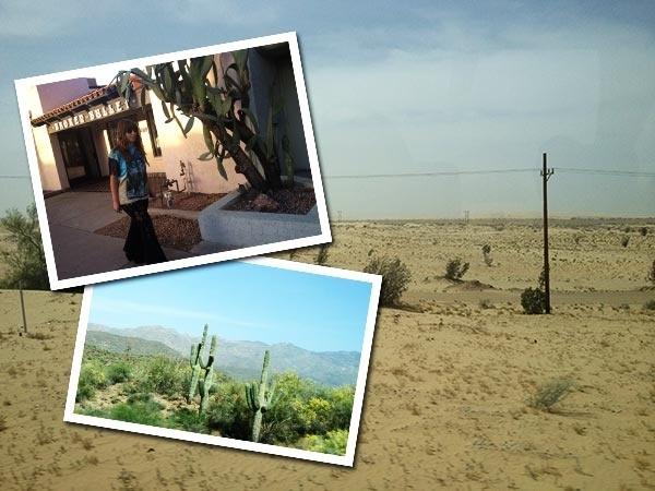 Lauren's USA Contiki adventure - Roadtrip