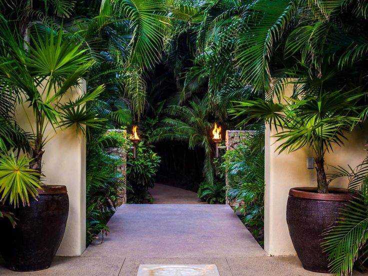 Just beyond this lush and verdant entrance awaits your very own tropical paradise. Yes, you; Casa Aramara is available to rent, that is if you've got the dough-re-mi.