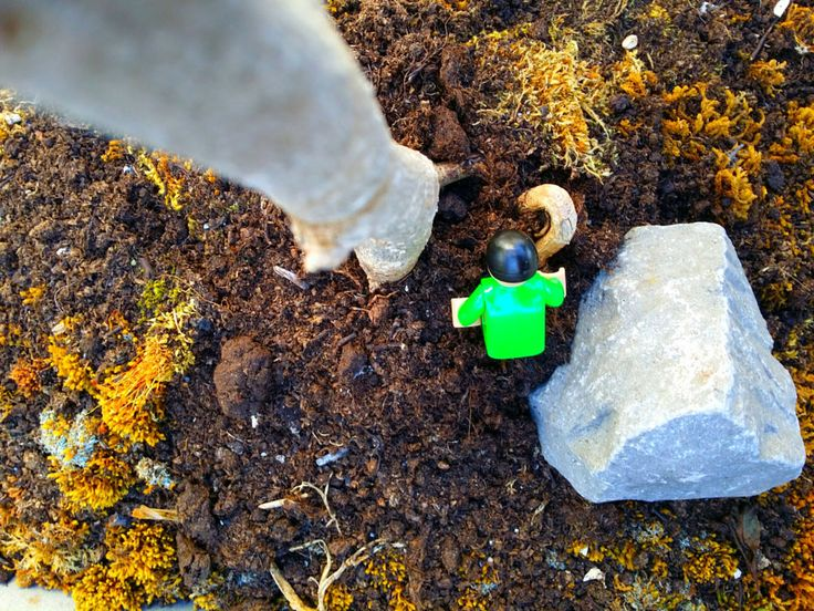 Lego in the woods by LIJO James on 500px