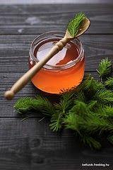Iza Gotuje blog kulinarny o gotowaniu: Syrop z młodych pędów sosny: ból gardła, angina. Prosty Przepis. Jak wygląda sosna zwyczajna i dlaczego jest niezwyczajna? Pinus silvestris L.