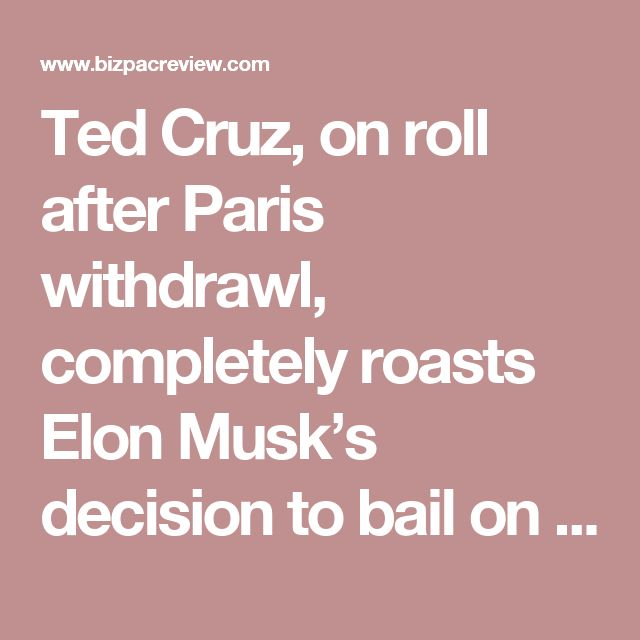 Ted Cruz, on roll after Paris withdrawl, completely roasts Elon Musk's decision to bail on Trump | Conservative News Today