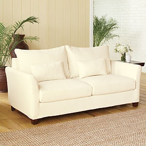 @Jane Brandon what do you think of this couch for when we live together?  it's on sale for $164 right now.  but then we have to buy the slipcover.  still not bad considering it has some down filling.