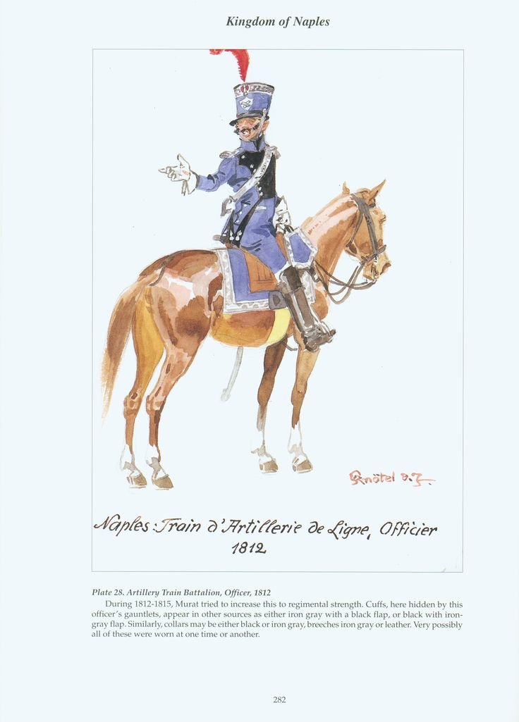 Kingdom of Naples: Plate 28. Artillery Train Battalion, Officer, 1812.