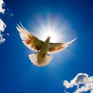 DUMNEZEU ARE GRIJĂ DE TINE - JURNAL DE STUDIU de OCTAVIAN LUPU în ediţia nr. 245 din 02 septembrie 2011
