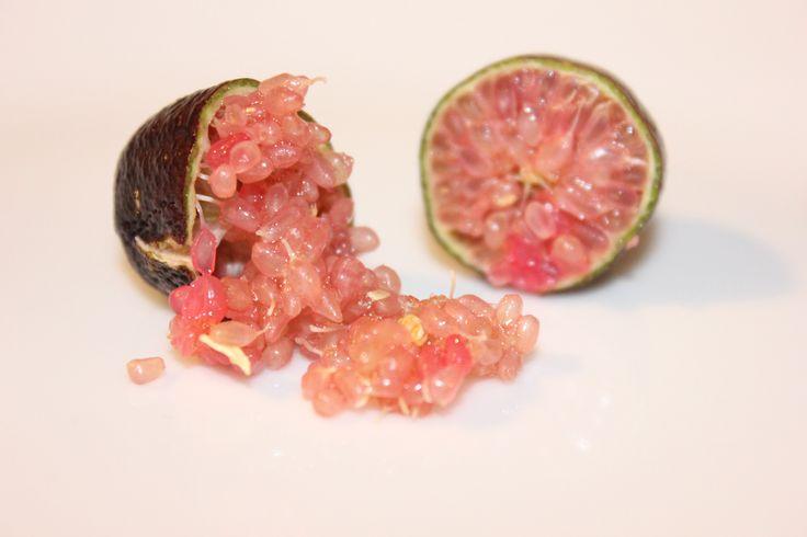 Pregiatissimo caviale di limone australiano,conosciuto anche come Finger Lime