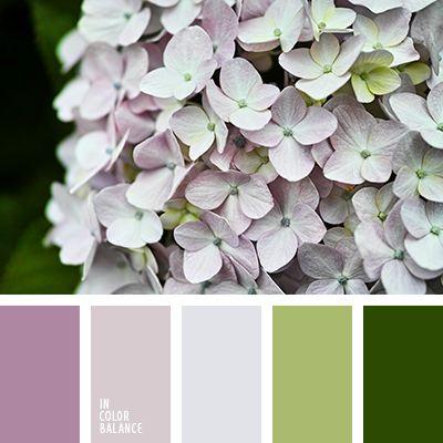 El verde oscuro hace resaltar esta combinación ligera y suave de tonos púrpuras. Tales colores son muy acertados para decorar una tienda de ropa femenina o un salón de bodas. Crearán un ambiente romántico y exquisito en tu local.