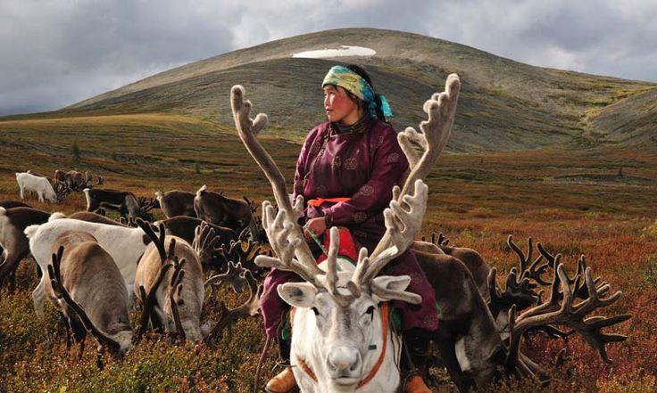 I desperately want to meet these people. Tsaatan: nomadic reindeer herders in Mongolia