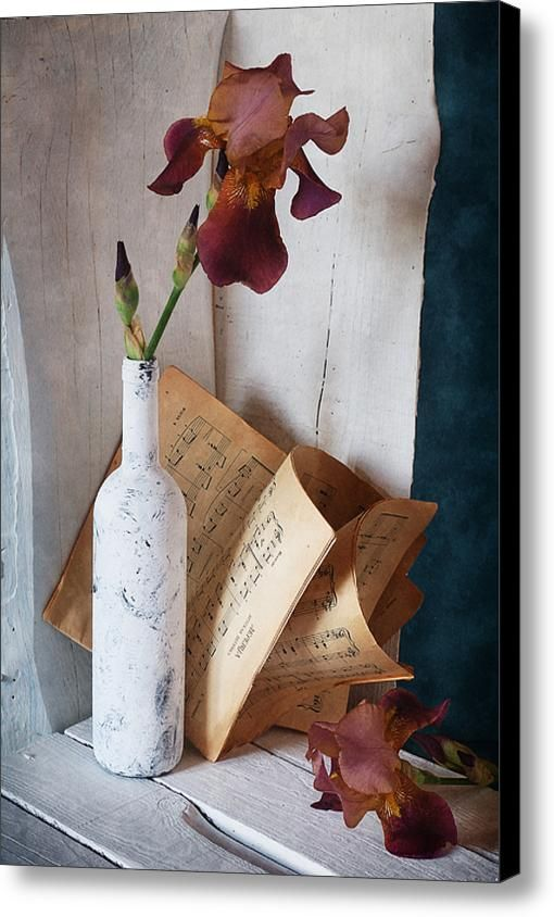 $75 • Canvas Print: http://nikolay-panov.artistwebsites.com/products/iris-flower-nikolay-panov-canvas-print.html • Floral #stilllifephotography with pink #irisflower in tall #whitepainted bottle and #vintage old #musicbook on #wooden background in #summertime