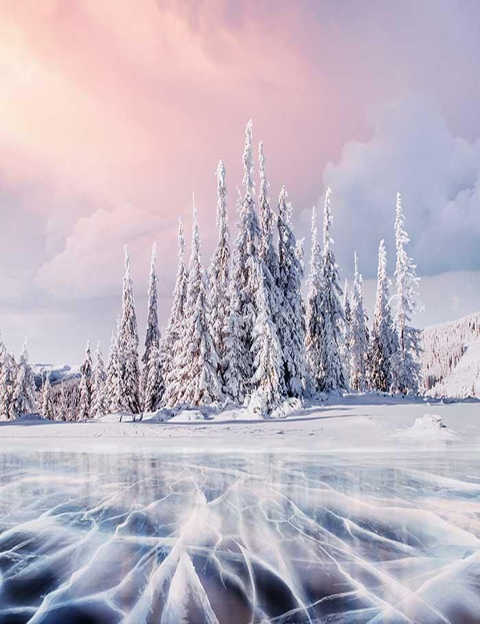 Pine Forest Covered Snow With Ice River Photography Backdrop J 0200 Winter Landscape Photography Winter Landscape River Photography