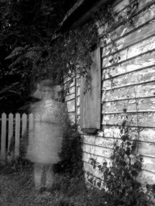 memorys ghost in beloved essay