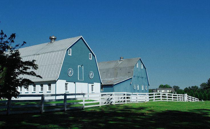 Celeiros azuis no condado de Hartford, estado de Maryland, USA.  Fotografia: Marcellina no Flickr.