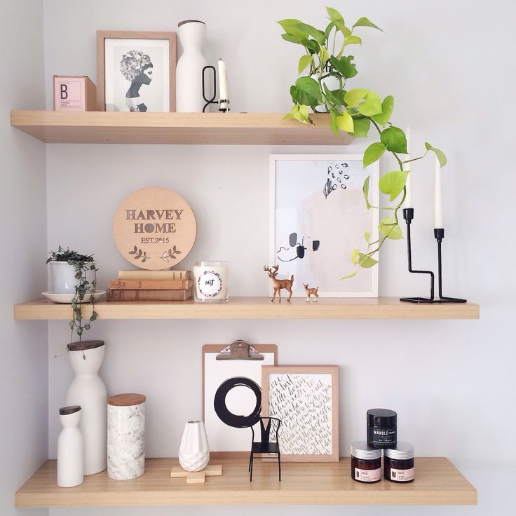 Shelves with green foliage in our living room