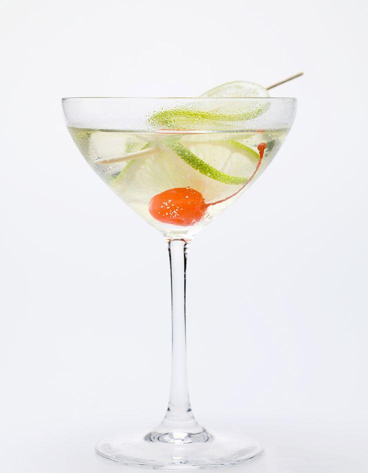 Recette Cocktail au Martini blanc et tonic : Dans un verre haut rempli de glaçons, versez le Martini blanc, allongez avec du tonic. Ajoutez une rondelle de cit...