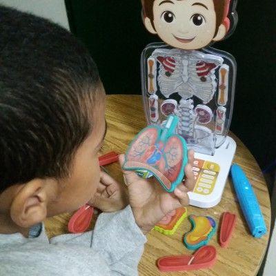 Oregon Scientific Smart Anatomy is an educational and fun way kids learn the human body