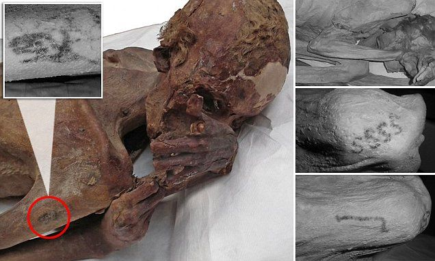 World's oldest tattoos are found on Egyptian mummies   Daily Mail Online