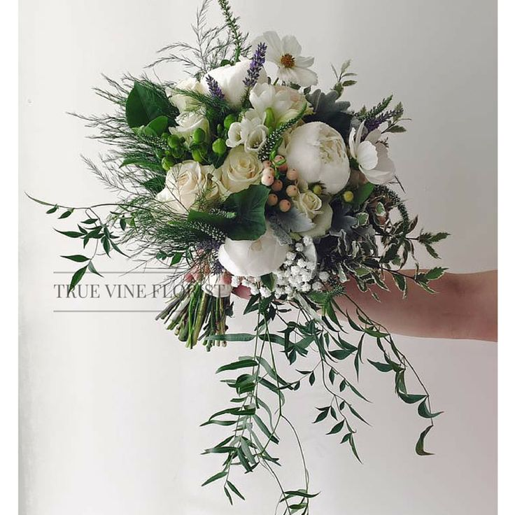 True Vine Florist. Florist Based in Sydney inner west. Enquire today. #sydneyflorist #sydneyflowers #bouquet #flowers #floral #flowerarrangement #floraldesign #sydney #flower #rose #bridal #bridalbouquet #bridesmaids #whiteandgreenbouquet #trailingbouquet#dustymiller #truevineflorist #weddinginspiration #weddingflowerinspiration #weddingbouquetinspiration #peony #peonybouquet #peonies #weddingbouquet #lavender #outdoorwedding #flowerbouquet #whitebouquet #bridesmaidsbouquet #rose…