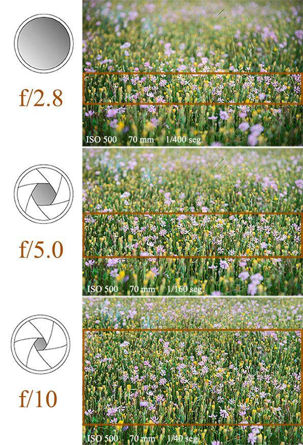 Si el obturador es el mecanismo que controla el tiempo de exposición, el diafragma es el mecanismo que controla la intensidad de luz, estrechando el cono de luz que entra en el objetivo. La apertura la identificamos con el número f. En todas las lentes tenemos una referencia a la máxima apertura posible. Podemos utilizar...