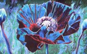 twilight poppies - Yahoo Image Search Results
