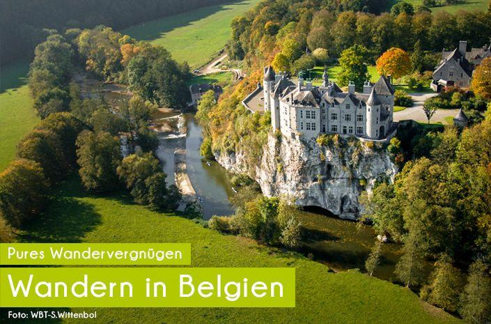belgien wk start