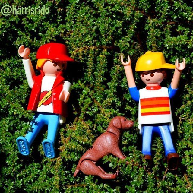 We do not remember days we remember moments.. Recordamos momentos no días @rebelheart #playmobil #felicita @happiness #felicidad #glück #sharethesmile #toy #juguete #spielzeug #boys #guys #dog #perro #hund #cane #love #summer #verano #summer #estate #modernfamily #nature #naturaleza #natura #natur @playmobil #klick #clicks #toyartistry_elite #toyartistry #toyart #pride