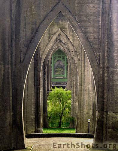 "The arched concrete supports of the St. Johns Bridge form ""Cathedral Park"" in Portland, Oregon.  Photo by Yvonne Mestre"