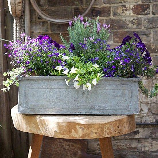 mur terrasse petites fleures