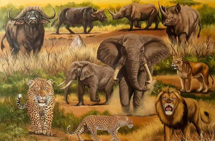 "Watch the Big Five come alive in your living room - Lion, Leopard Buffalo Elephant Rhino. The most dangerous animals in Africa. Painting Size: 123 x 92 cm | 48 x 36"" Media: Oil on canvas   #art #arty #artist #artlovers #artsy #artoftheday #paintings  #fineart #fineartist #Africanart #oilpainting #painting #oiloncanvas #illustration #drawing #instaartist#artgallery #masterpiece #instaart #beautiful  #wildlife #wildlifeplanet #wildlifephotography #wildanimals #bigfive#Elephant #leopard"