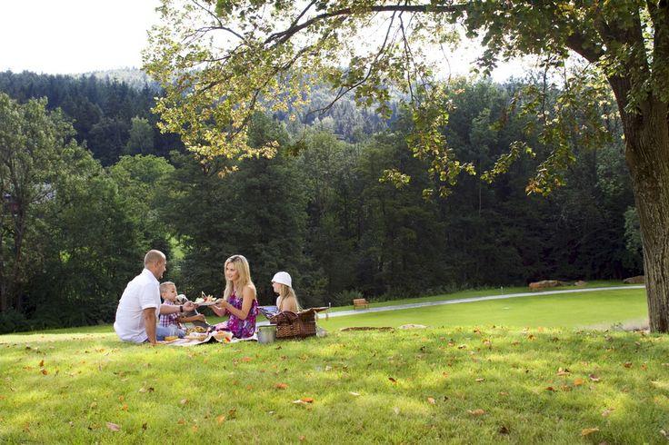 Family picnic in the garden