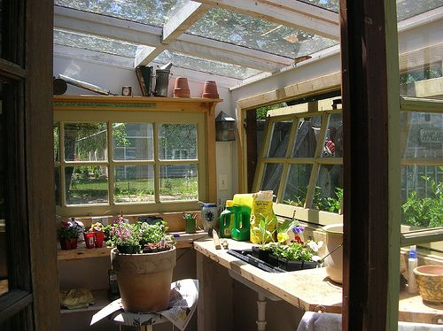 Inside a beautiful potting shed made of salvaged materials, inspiring to make my own someday