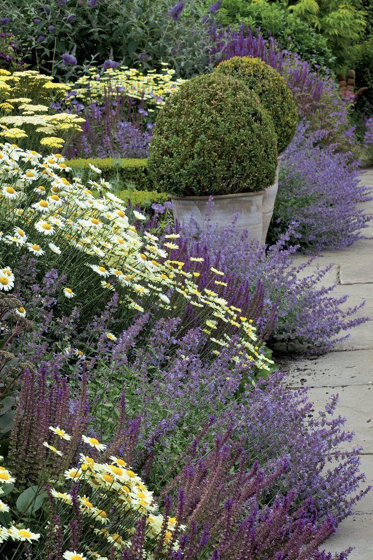 Piante Per Aiuole Perenni 5 coperte perenni a fiore lungo da avere! | giardino