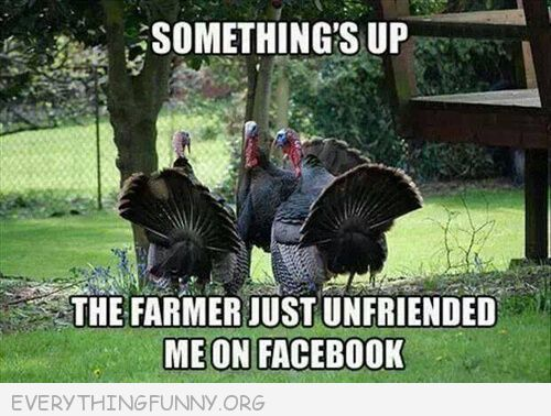 Funny Thanksgiving Pictures - http://everythingfunny.org