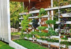 Cerca viva - jardim vertical