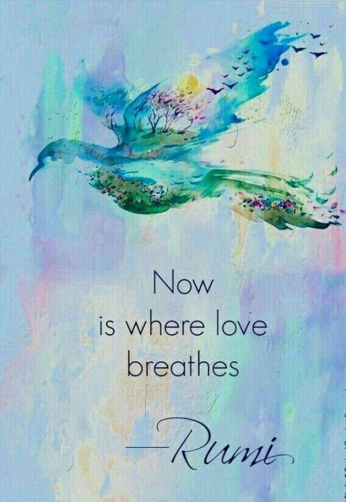Rumi Quote | Love | the Present Moment