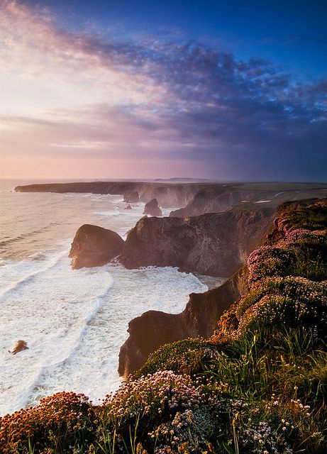The sun sets over flower covered cliffs at Giant Steps in Cornwall, UK