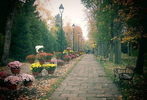 Botanical Garden, Iasi, Romania