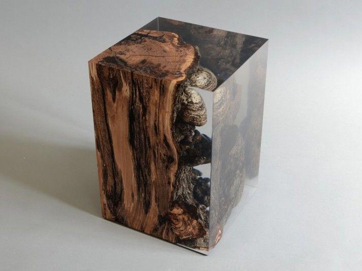 Fungi Block in wood and resin www.alcarol.com