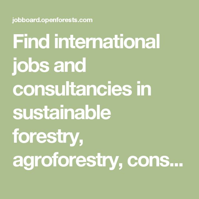 Find international jobs and consultancies in sustainable forestry, agroforestry, conservation and ecology. - Canopy Jobboard