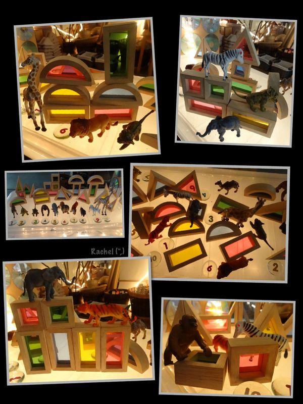 "Animals on the lightbox from Rachel ("",)"