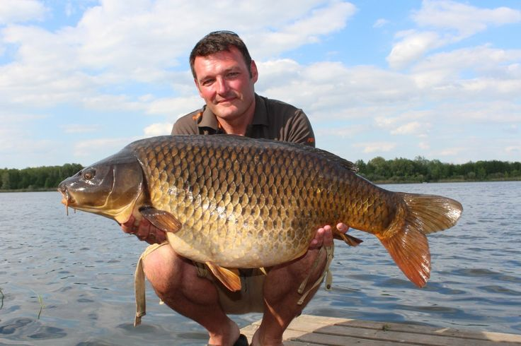 149 Best Carp Fishing Images On Pinterest Carp Fishing