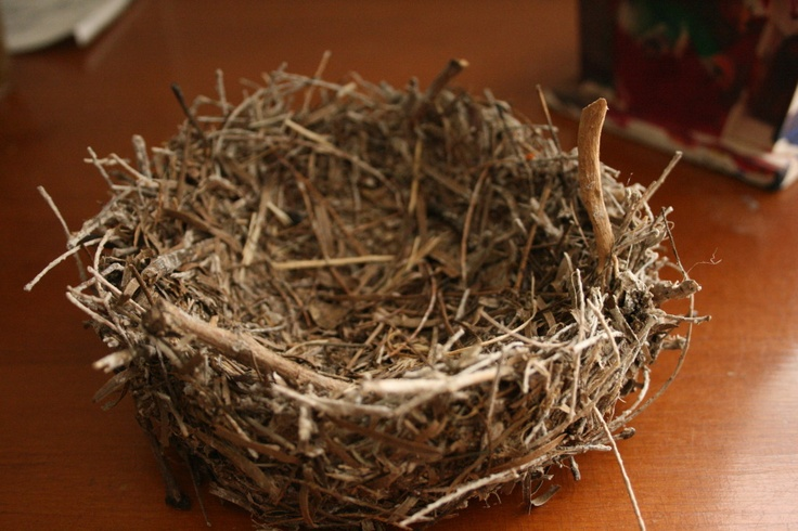 DIY Bird Nest Easter Pinterest