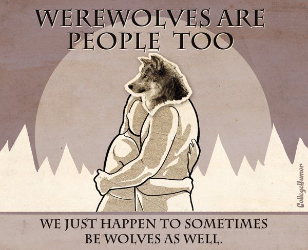 Werewolves are people too!: Harry Potter ️, Books Jackets,  Dust Jackets, Werewolves, Harry Potter 3,  Dust Covers, People, Nerd United,  Dust Wrappers