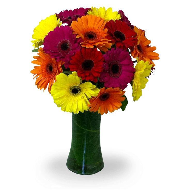 Mix de Gerberas!! para provocar una sonrisa, modelo Iloca en www.floreriasumonte.cl
