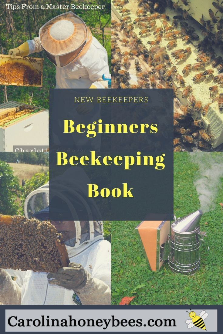 283 best bee friendly bee protect images on pinterest backyard do you want to keep bees how many hives do you need where should you place your hives find out all this and more in my beekeeping ebook real beekeeping fandeluxe Ebook collections