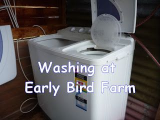 Early Bird Farm: Washing