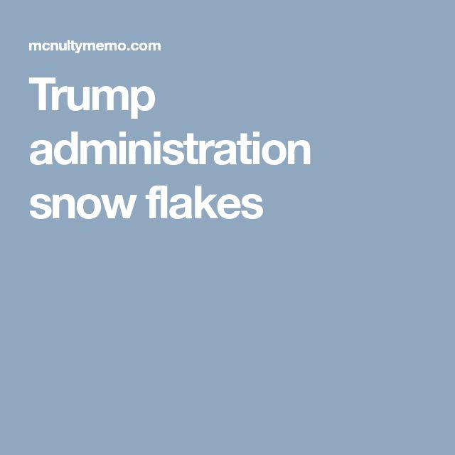 Trump administration snow flakes