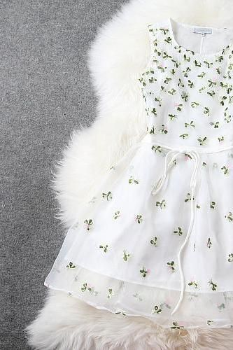 White Gorgeous Embroidered Lace Dress